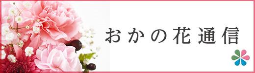 おかの花通信